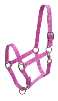 3 Ply Avg Horse Size Adjustable Halter w/Heavy Duty Throat Latch