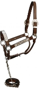 Horse size show halter with matching lead